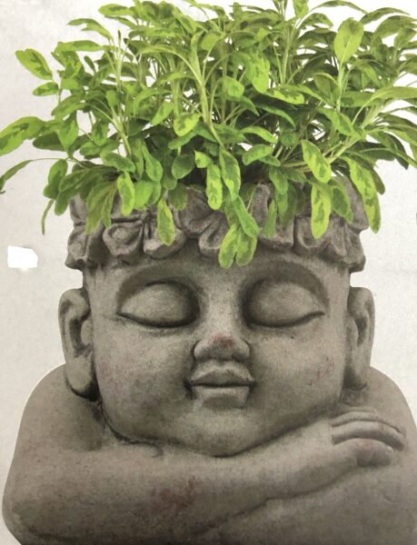 Pflanzkopf Büste Kopf mit Blumenkranz z. Bepflanzen Cement creme/grau H 18,5 cm